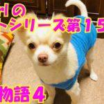 【大海物語4】実践パチンコバイト 第153回