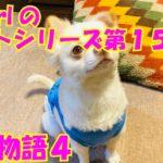 【大海物語4】実践パチンコバイト 第158回