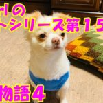 【大海物語4】実践パチンコバイト 第159回