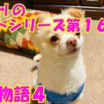 【大海物語4】実践パチンコバイト 第160回