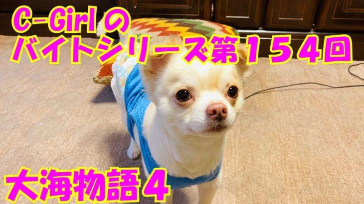 【大海物語4】実践パチンコバイト 第154回