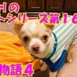 【大海物語4】実践パチンコバイト 第165回