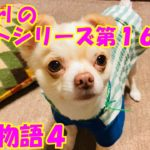 【大海物語4】実践パチンコバイト 第169回
