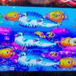 パチンコPA海物語3R2 大当たり集㉒