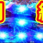 『CR大海物語4 アグネス53』悶絶★超レア出目『逆T字』出現!