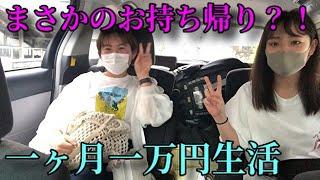 【ギャンブルVS節約】1ヶ月1万円生活 #3