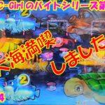 【大海物語4】実践パチンコバイト 第186回