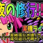 パチンコ実機◆夜の雑談「CRAスーパー海物語IN沖縄4 With アイマリン」 ◆パチンコ ライブ