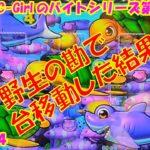 【大海物語4】実践パチンコバイト 第198回
