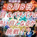 パチンコの日(8/8)に挑戦❗ パチンコの日は〇〇の日になりました【AKB48 123フェスティバル】【戦姫絶唱シンフォギア2】