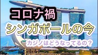 【カジノ】コロナ禍のシンガポールの現状を聞いてみた!【マリーナベイサンズ】