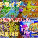 【家パチ】Pスーパー海物語 in JAPAN2 金富士 319ver 2021年2月18日 パチンコライブ