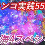 【パチンコ実践】P大海物語4スペシャル【55戦目】