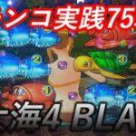 【パチンコ実践】P大海物語4スペシャルBLACK【75戦目】