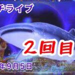 【パチンコ実機配信】CR大海物語4 BLACK 2021年9月5日 ライブ