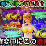 【309日目】Pスーパー海物語in沖縄5で閉店間際に爆発開始!取り切れるのか?!(ガチ実践動画2021/9/19)